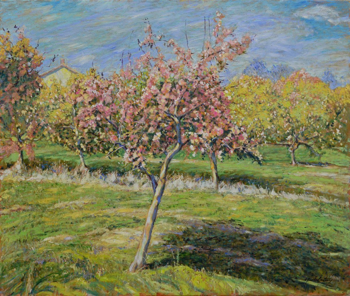 Garth Armstrong - Orchard, North of Oshawa