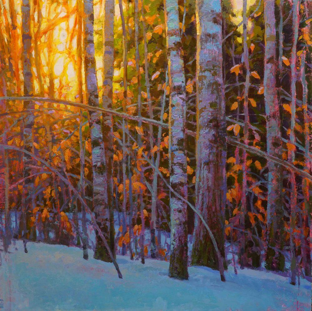 Tony Bianco - Winter Woods